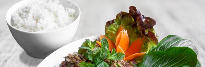 Entenfleisch Salat (Lab Ped)